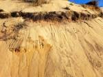 paleosol de la dune du pyla