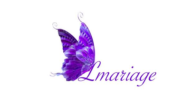 Capture papillon baniere Lmariage savoye LET 2016 08 06 14 52 27