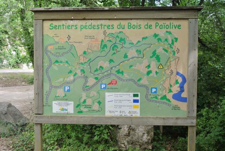 Sortie au Bois de Paiolive 31 05 2017 010