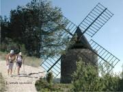 http://www.waibe.fr/sites/lesgenets/medias/images/2012_-_Frigolet_et_Bourbon/Diapositive19.JPG