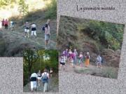 http://www.waibe.fr/sites/lesgenets/medias/images/2012_-_Oct_-_THUYETS/Diapositive8.JPG