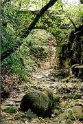 http://www.waibe.fr/sites/lesgenets/medias/images/__HIDDEN__galerie_35/Pont_du_Diable_donnant_acces_a_la_chartreuse.jpg