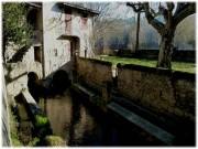 http://www.waibe.fr/sites/lesgenets/medias/images/__HIDDEN__galerie_52/Diapositive10_-_Copie_-_Copie_-_Copie.JPG