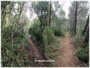http://www.waibe.fr/sites/lesgenets/medias/images/__HIDDEN__galerie_52/Diapositive29_-_Copie_-_Copie_-_Copie.JPG