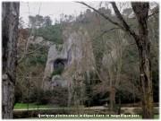 http://www.waibe.fr/sites/lesgenets/medias/images/__HIDDEN__galerie_52/Diapositive6_-_Copie_-_Copie_-_Copie.JPG