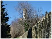 http://www.waibe.fr/sites/lesgenets/medias/images/__HIDDEN__galerie_52/Diapositive88_-_Copie_-_Copie.JPG
