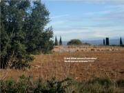 http://www.waibe.fr/sites/lesgenets/medias/images/__HIDDEN__galerie_66/Diapositive14.JPG