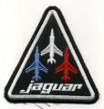 z  jaguar  3 .jpg