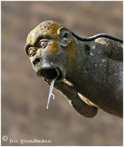 http://www.waibe.fr/sites/photoeg/medias/images/AVIOTH/gargouille_glace_013.jpg
