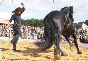 http://www.waibe.fr/sites/photoeg/medias/images/CHASSEPIERRE/2014-chassepierre_04.jpg