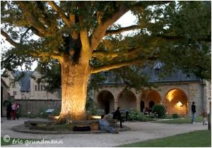 http://www.waibe.fr/sites/photoeg/medias/images/ORVAL/ORVAL_nuit__8_.jpg