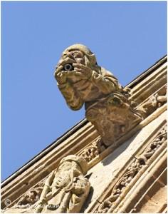 http://www.waibe.fr/sites/photoeg/medias/images/__HIDDEN__galerie_38/mouzon_37.jpg
