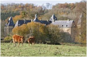http://www.waibe.fr/sites/photoeg/medias/images/patrimoine/tassigny_02.jpg