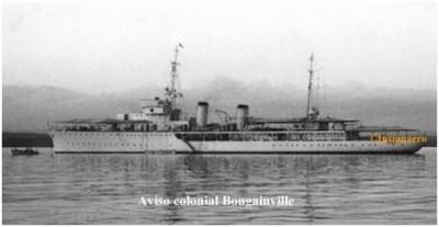 Photo aviso Bougainville