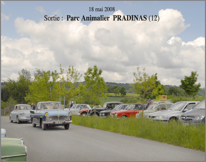 Pradinas   2008
