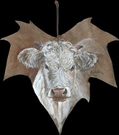 14.Vache charolaise