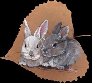 lapins peuplier