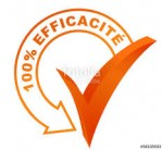 Agence BCG Efficacite