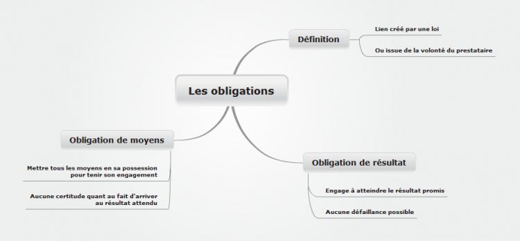 Agence BCG Obligation de moyens
