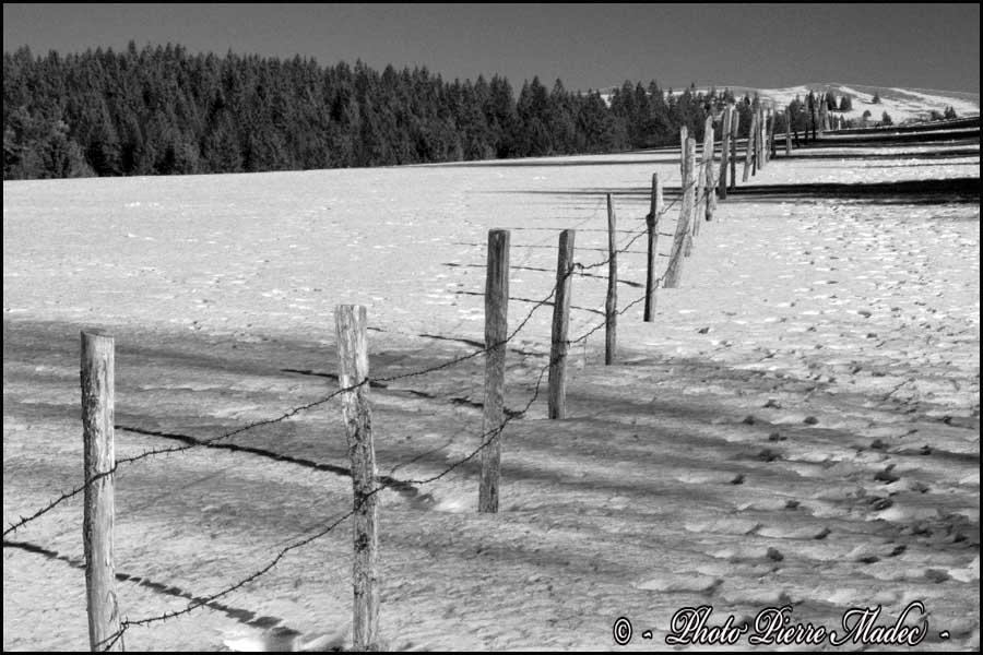 Paysage hivernal du Mont Dore