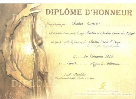 DIPLOMEMONITORAT 001