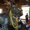 Pattadakal Nandi 8