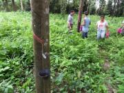 https://www.waibe.fr/sites/micmary/medias/images/Guatemala2/GT-070-Tikalik_Abaj-Xela.JPG