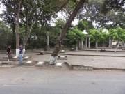 https://www.waibe.fr/sites/micmary/medias/images/Guatemala2/GT-265-Panajachel-Santiago.JPG