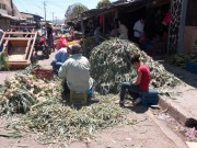 https://www.waibe.fr/sites/micmary/medias/images/Nicaragua/N-540-Esteli-Marche.JPG