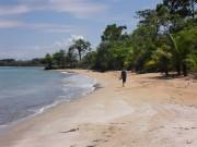https://www.waibe.fr/sites/micmary/medias/images/Panama/P-185-Bocas-Seule.JPG