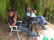 https://www.waibe.fr/sites/micmary/medias/images/Panama/P-455-Panama-Cerro_Ancon-Comptage_des_rapaces_migration.JPG