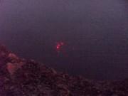 https://www.waibe.fr/sites/micmary/medias/images/__HIDDEN__galerie_4/N-336-Leon-Volcan_Telica-5212-b.jpg