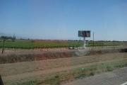 https://www.waibe.fr/sites/micmary/medias/images/__HIDDEN__galerie_41/AR-0200-Mendoza-vigne-3315.jpg