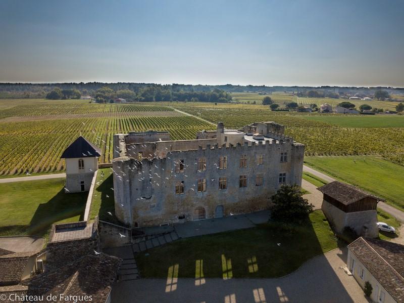 Chateau de Fargues 1 800 2