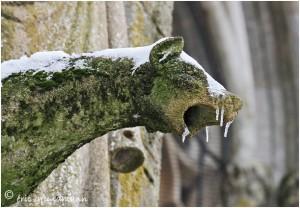 https://www.waibe.fr/sites/photoeg/medias/images/AVIOTH/gargouille_neige_01b.jpg