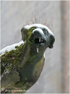 https://www.waibe.fr/sites/photoeg/medias/images/AVIOTH/gargouille_neige_03.jpg