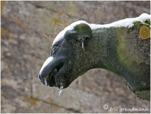 https://www.waibe.fr/sites/photoeg/medias/images/AVIOTH/gargouille_neige_04.jpg