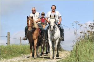 https://www.waibe.fr/sites/photoeg/medias/images/__HIDDEN__galerie_45/chevaux_020.jpg
