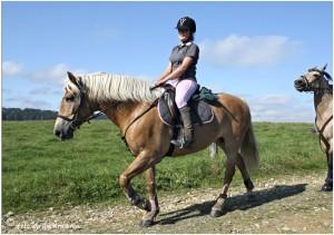 https://www.waibe.fr/sites/photoeg/medias/images/__HIDDEN__galerie_45/chevaux_026.jpg