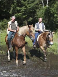 https://www.waibe.fr/sites/photoeg/medias/images/__HIDDEN__galerie_45/chevaux_029.jpg