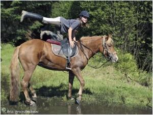 https://www.waibe.fr/sites/photoeg/medias/images/__HIDDEN__galerie_45/chevaux_034.jpg