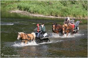 https://www.waibe.fr/sites/photoeg/medias/images/__HIDDEN__galerie_45/chevaux_04.jpg