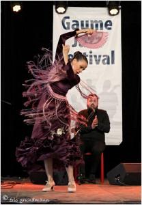 https://www.waibe.fr/sites/photoeg/medias/images/__HIDDEN__galerie_48/flamenco_01.jpg