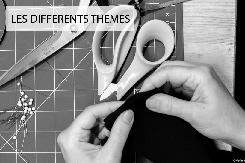 les differents themes