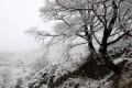https://www.waibe.fr/sites/sawadi/medias/images/__HIDDEN__galerie_7/Sumene_reve_d_hiver_4.jpg